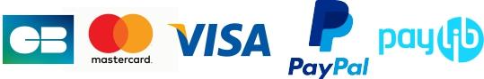 logos moyens de paiement boutique